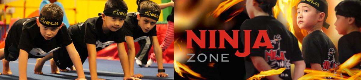 Gravity Ninja Zone